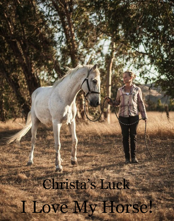 jennifer grais Solo blog christa's luck