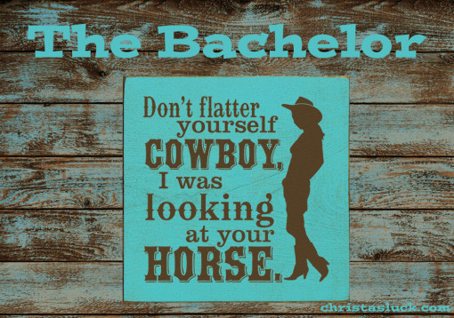 christas luck blog bachelor horses